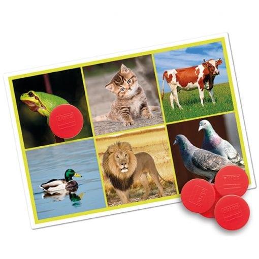 Bingo Animales y Naturaleza