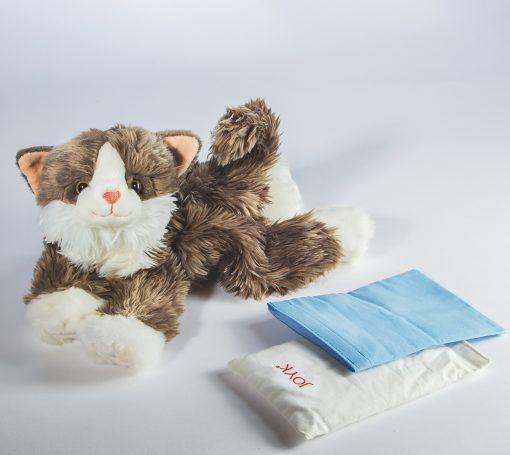 gato empatia billy