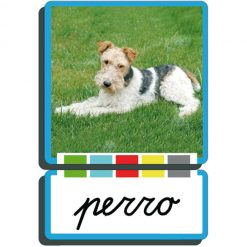 Autodidacto fotográfico perro