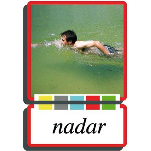 Autodidacto fotos verbos nadar