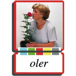 Autodidacto fotos verbos oler