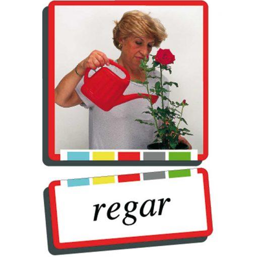 Autodidacto fotos verbos regar