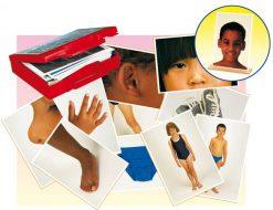 Fotos del cuerpo y prendas de vestir - Tarjetas