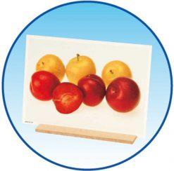 Fotos de alimentos frutas