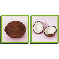 Las frutas y sus aromas - coco